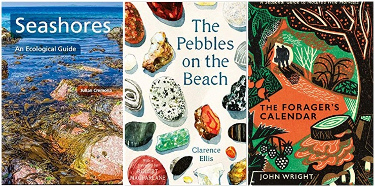 Seashores: an ecological guide, The Pebbles on the Beach, The Forager's Calender