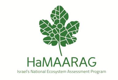 HaMaarag logo