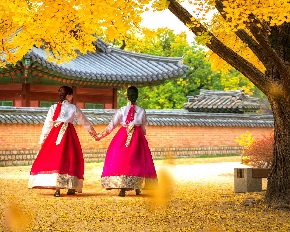 Immerse Yourself in Korean Culture