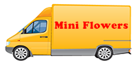 Mini Flowers - Transport personal