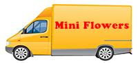 Mini Flowers - Transport personal