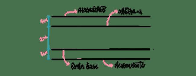 Linhas Guias e suas Medidas