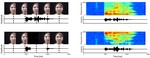 Audiovisual asynchrony detection in human speech.