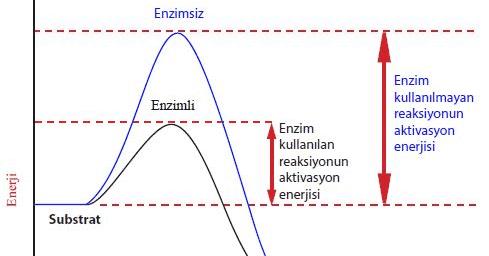 Entalpi ve Entalpinin Hesaplanması