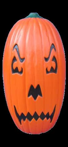 Dual Face Pumpkin photo