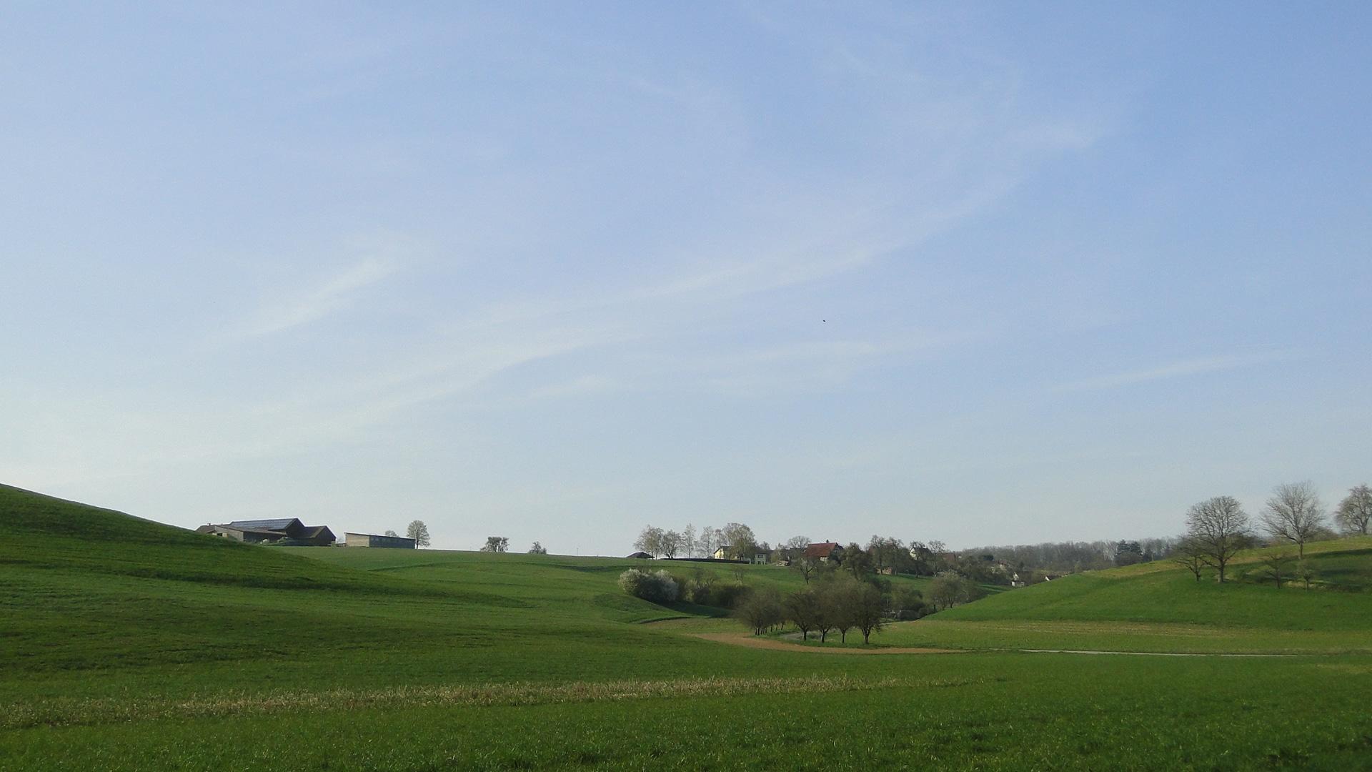 Grasshügel vor Eichach