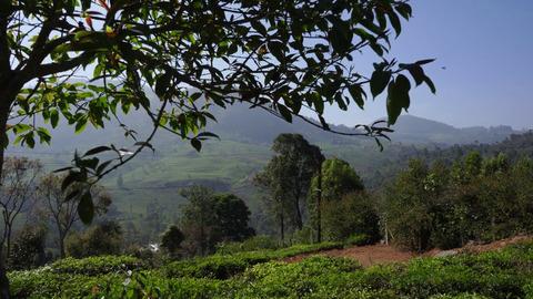 Plot 1 Vista Chiaro - View of Aravenu