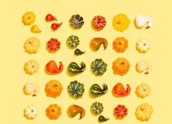 12 alimentos ricos en zinc buenos para la salud - Featured image