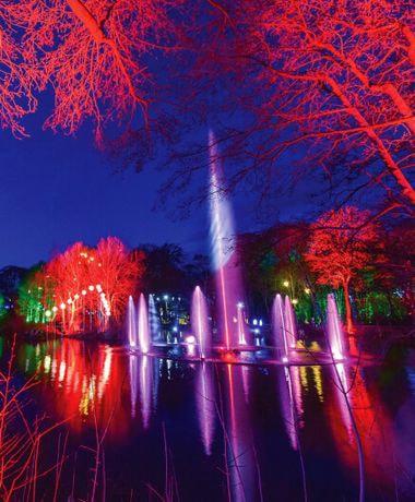 Winter Illuminations at Stockeld Park