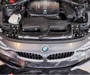 Preserve Your BMW
