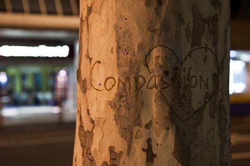 Compassion 9719