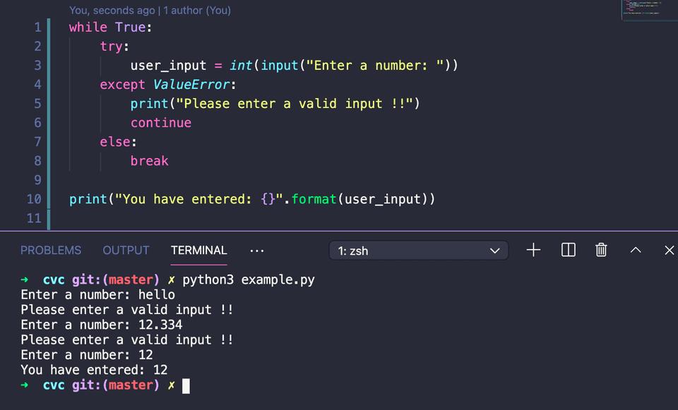 python take int input until a valid response