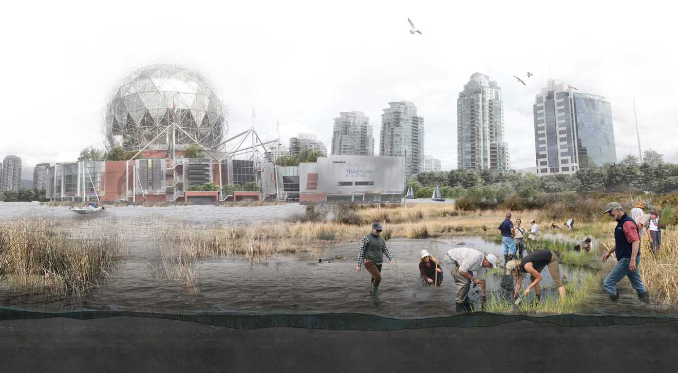 Speculative rendering of False Creek in 2050, illustrating the incorporation of nature-based solutions through the restoration of wetlands and coastal ecosystems. It shows a higher sea level that is mitigated by the planting and caretaking of coastal wetlands.