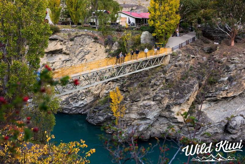 5 Reasons Why Your Time In Waitomo Will Be Unforgettable