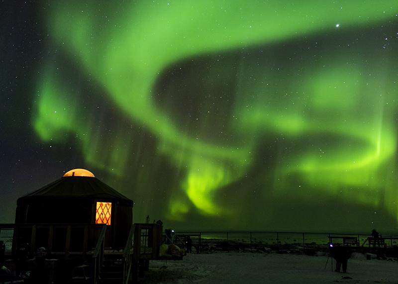 green aurora borealis over churchill wild