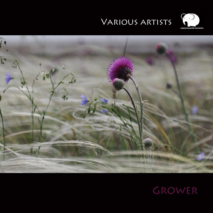VA «Grower»