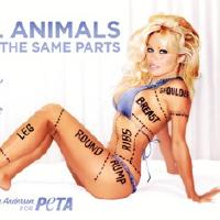 image from Pamela Anderson's Veggie Advert Banned