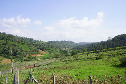 Gated Community with Plots for sale in Ooty | Vitrag Group