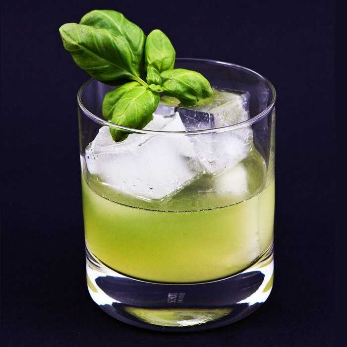 Gin Smash Cocktail