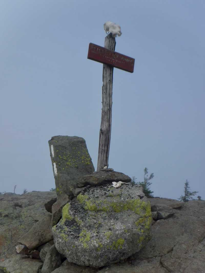 Summit of Saddleback Junior