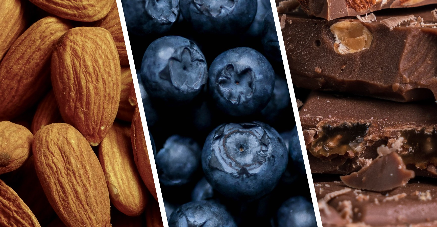 Images of almonds, blueberries and chocolate, foods threatened by biodiversity loss