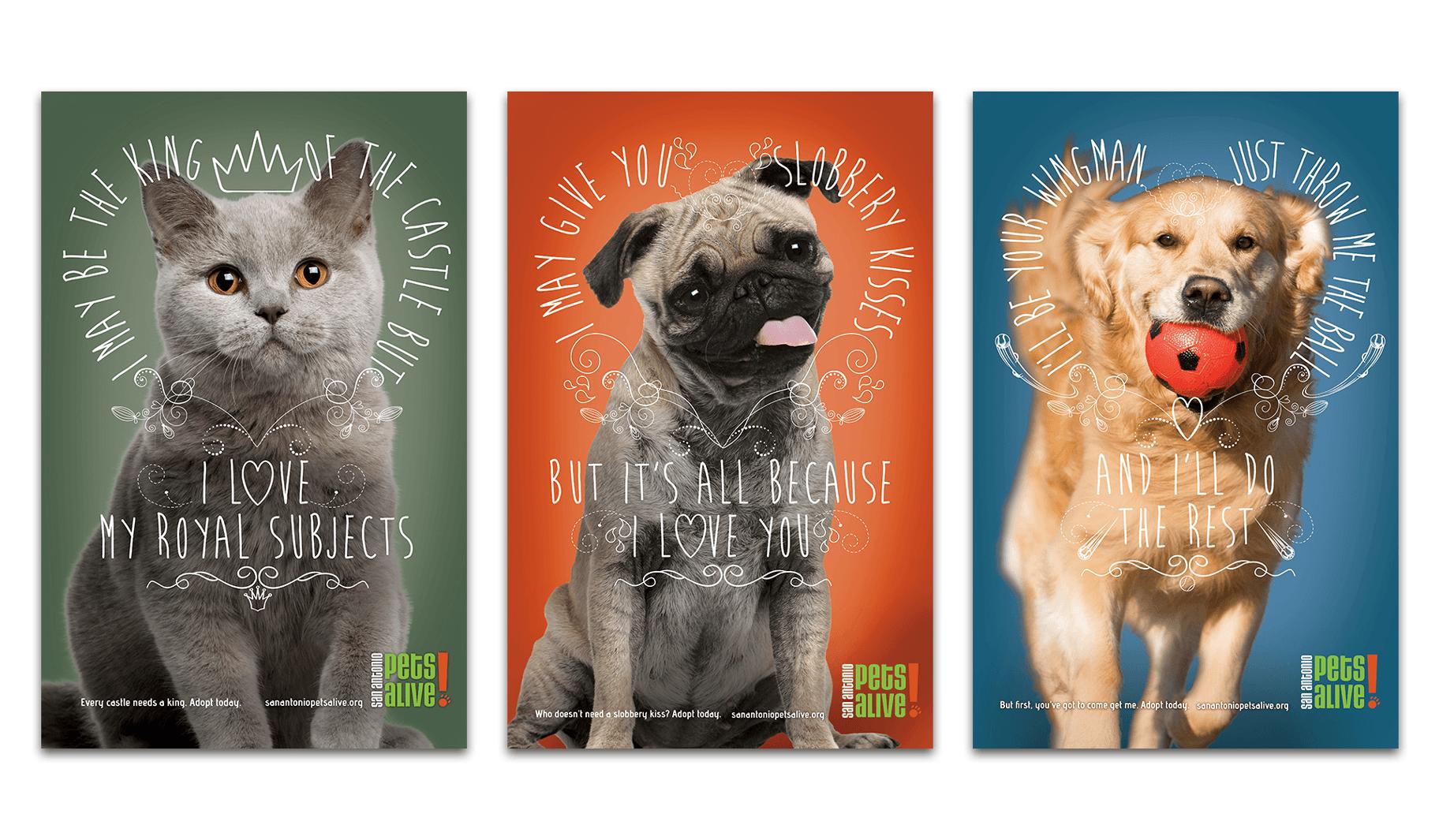SA Pets Alive Posters