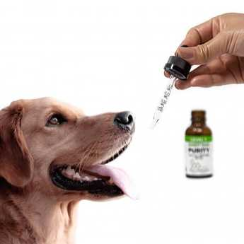 Tinctures - CBD Oil For Dogs - 30 Day Supply