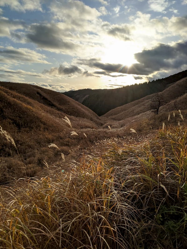 View down a valley as the sun goes down, with grasses in the foreground