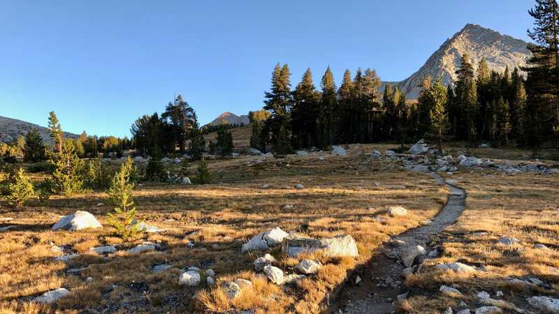 The JMT and PCT cross a meadow