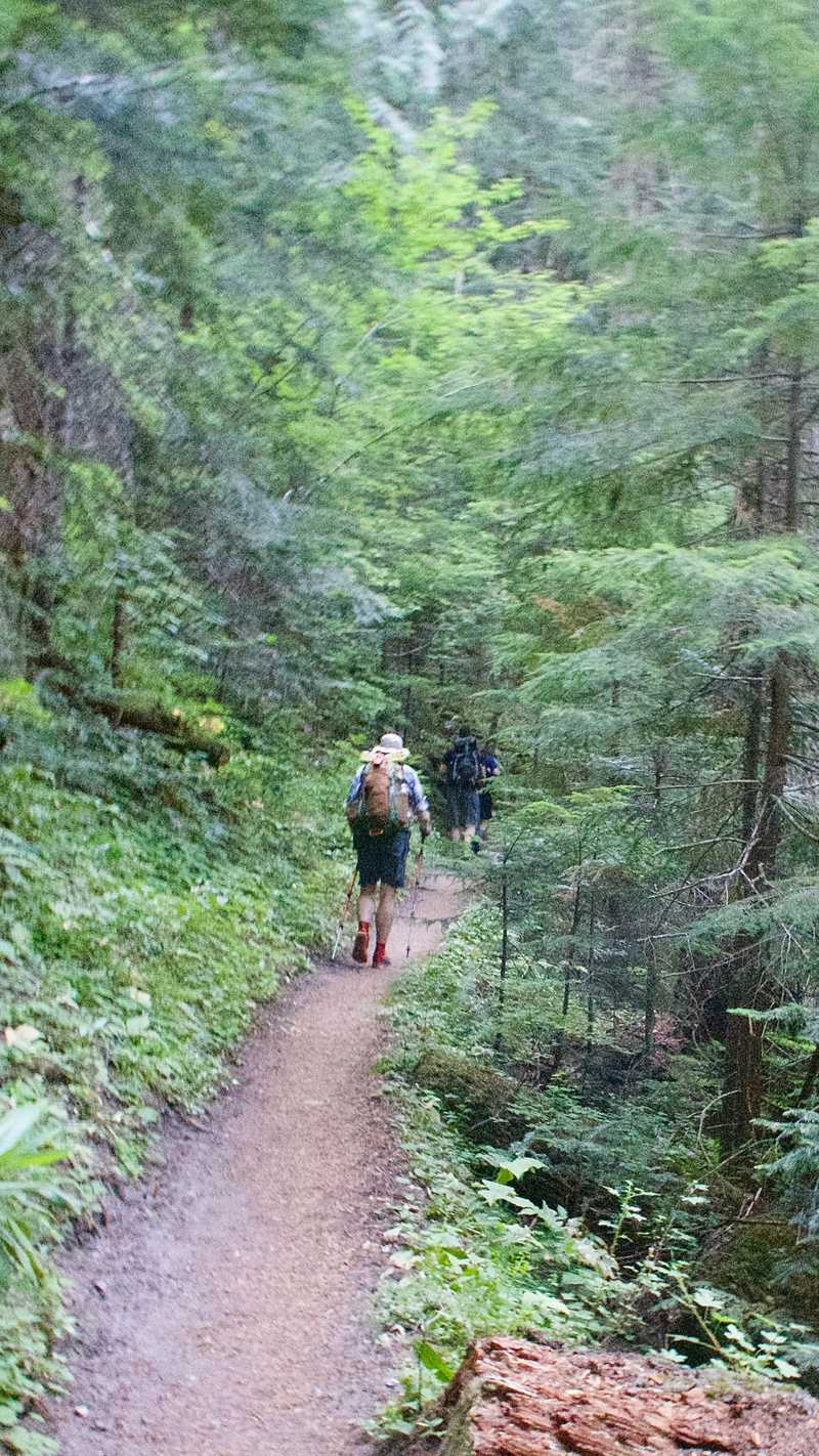 Smooth trail climbing from Sandy River