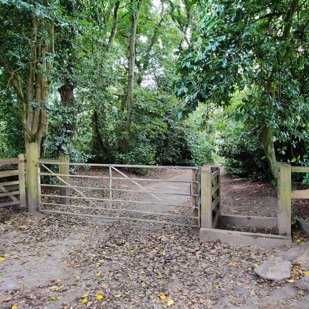 Calverley Wood entrance