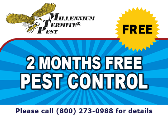 2 Months Free Pest Control, Call (916) 362-4400 For Details