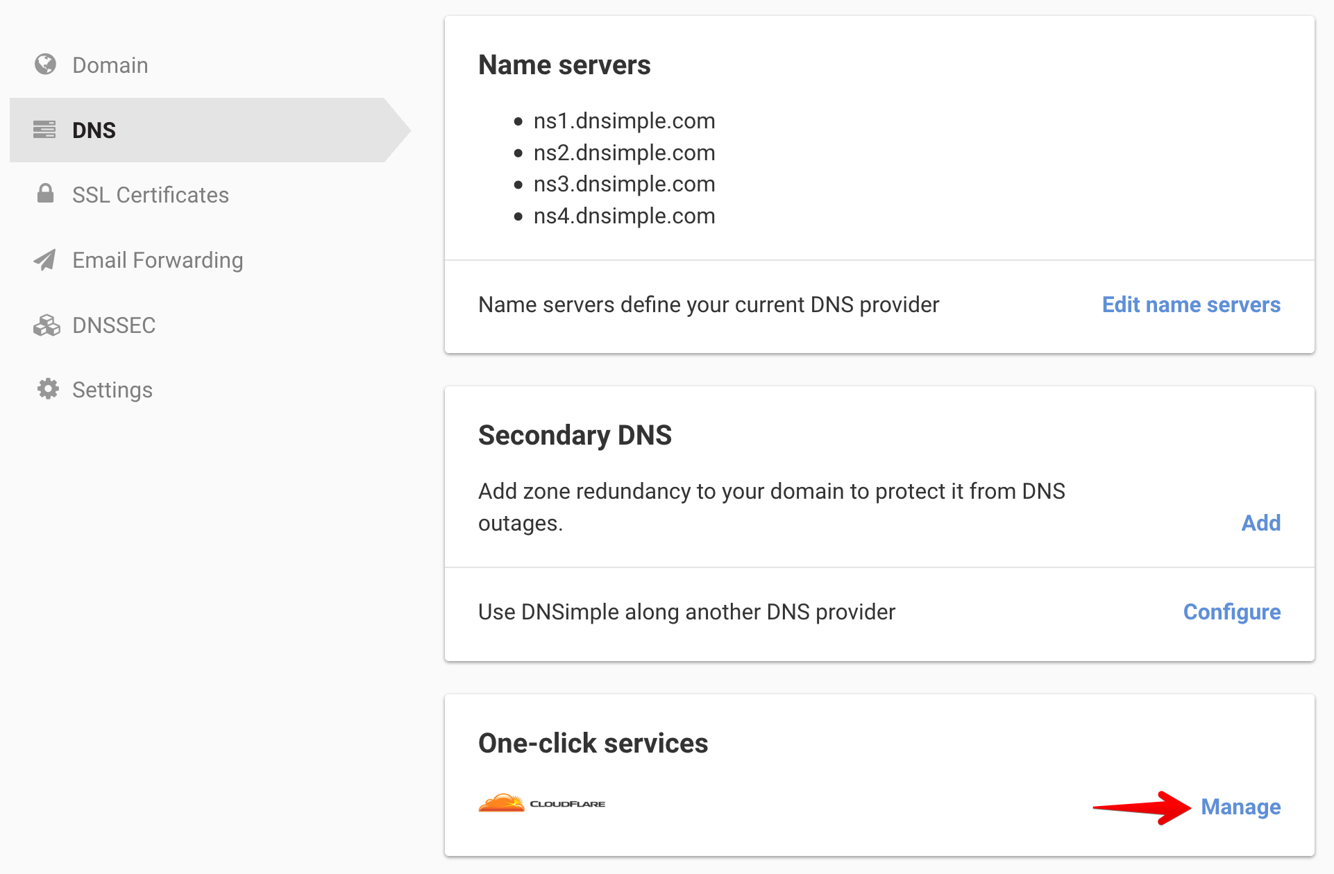 Domain DNS page