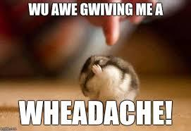 headache devhoot