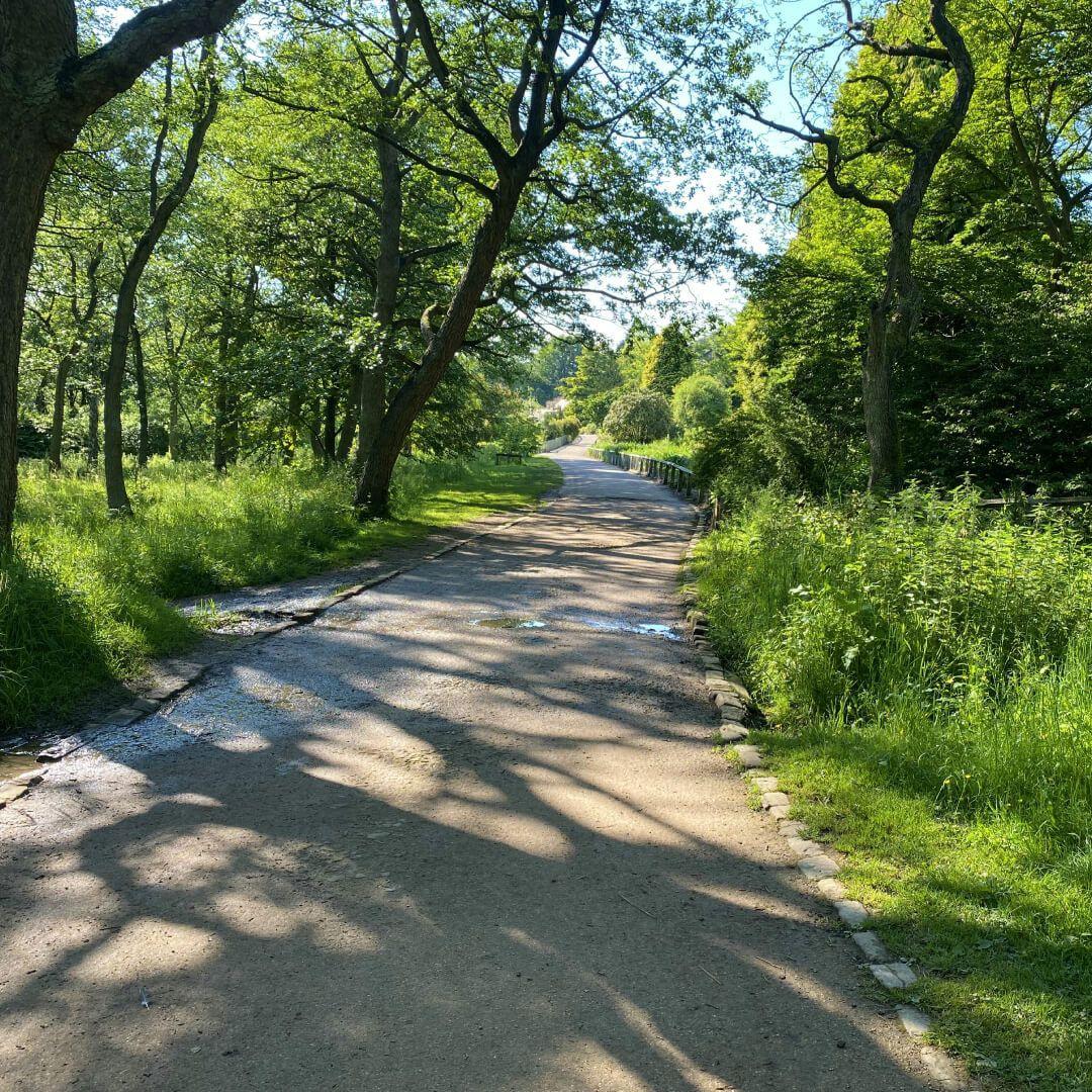 Golden Acre Park Path