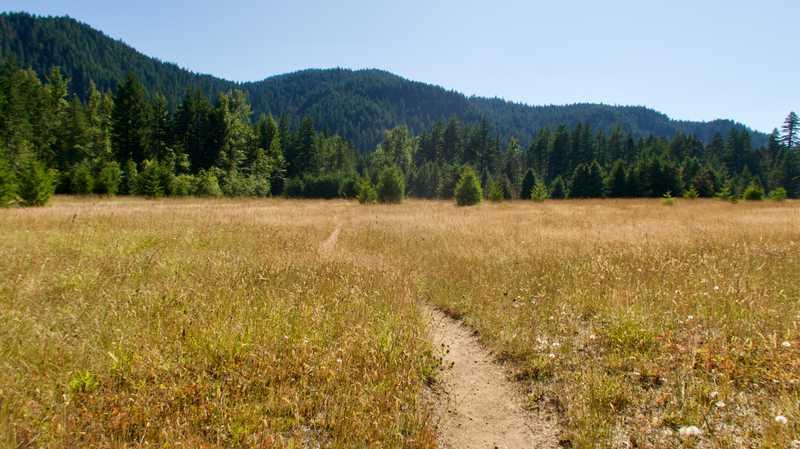A flat, wide meadow near Bunker Hill