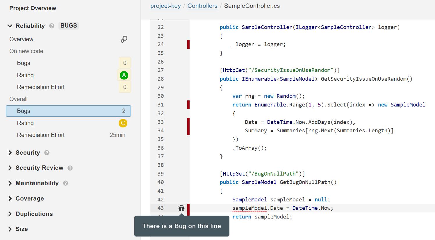 Screenshot of bug pointed by SonarQube