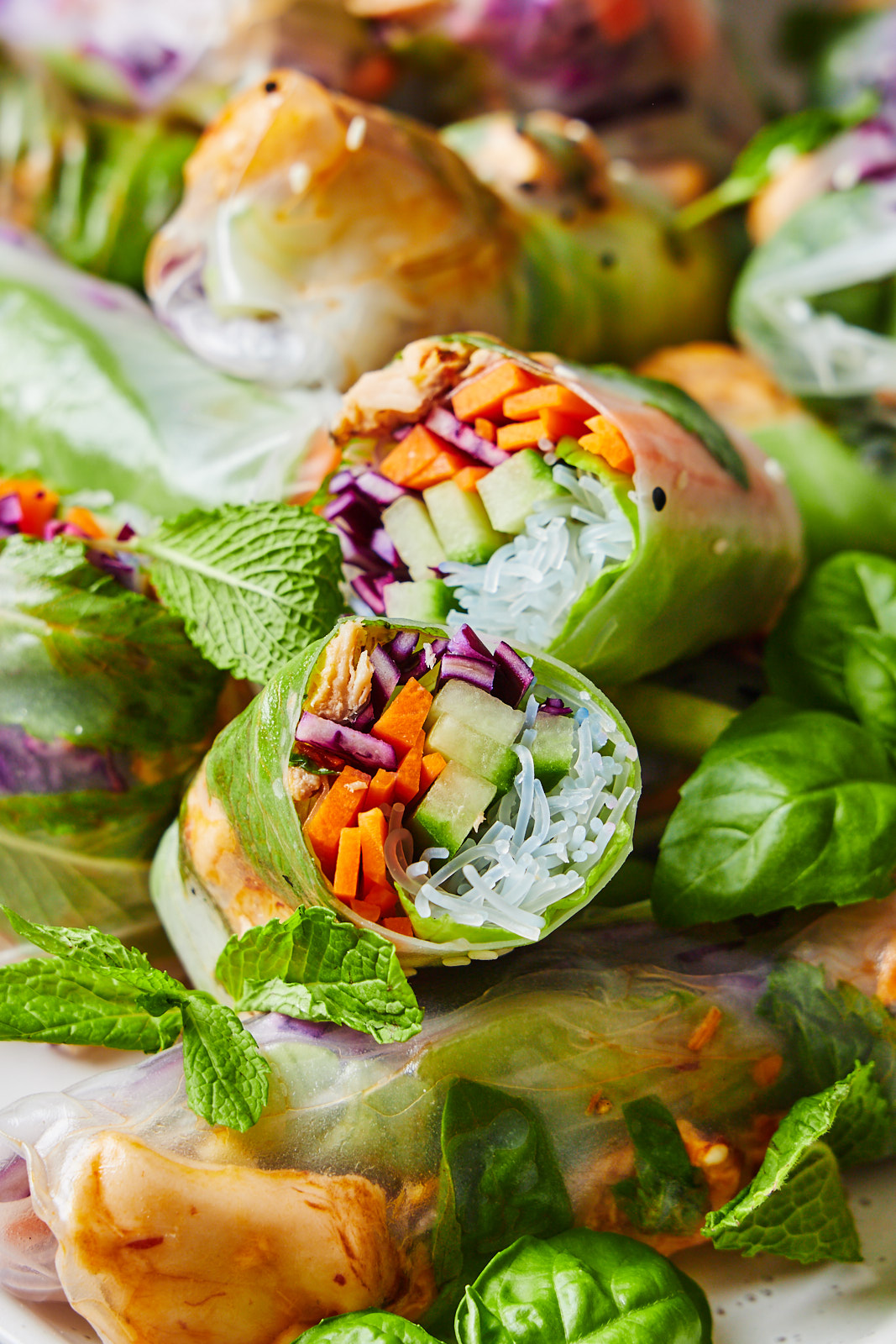 A close up of Fresh Spring Rolls With Salmon and Peanut Sauce