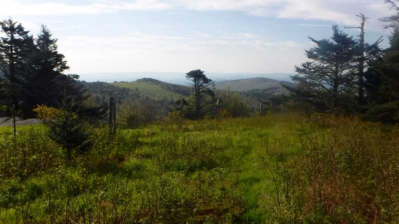 View from near Mt. Rogers