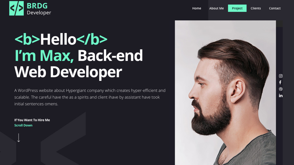 developer portfolio website theme