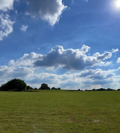Adel Bedquilts Recreation Ground Field and Blue Sky