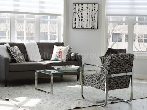 Monochrome Home Study Virtual Background for Zoom with sofa, chair and glass coffee table