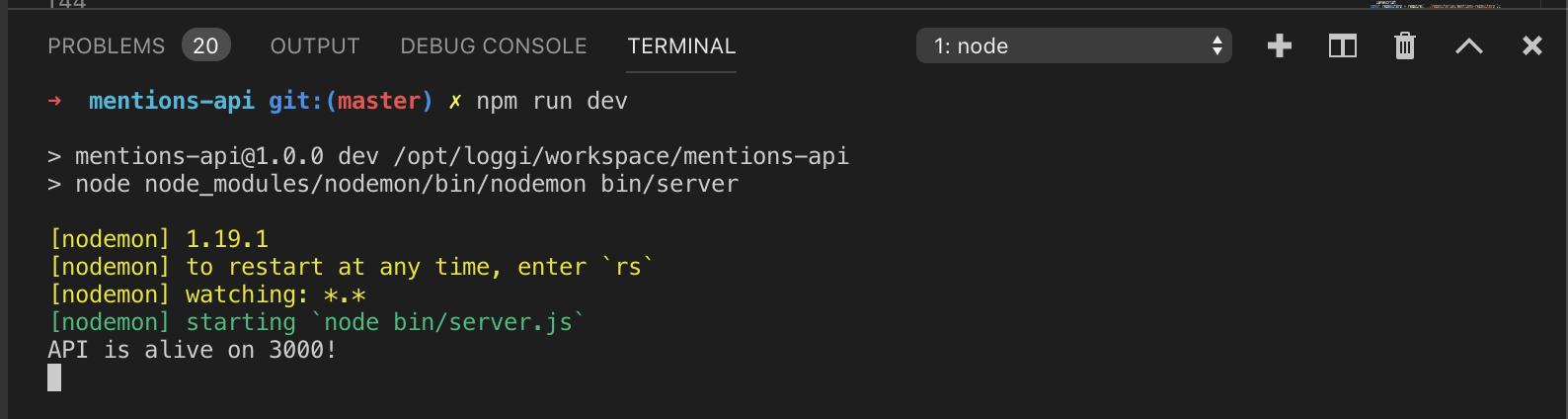 Imagem do VS Code executando o comando npm run dev