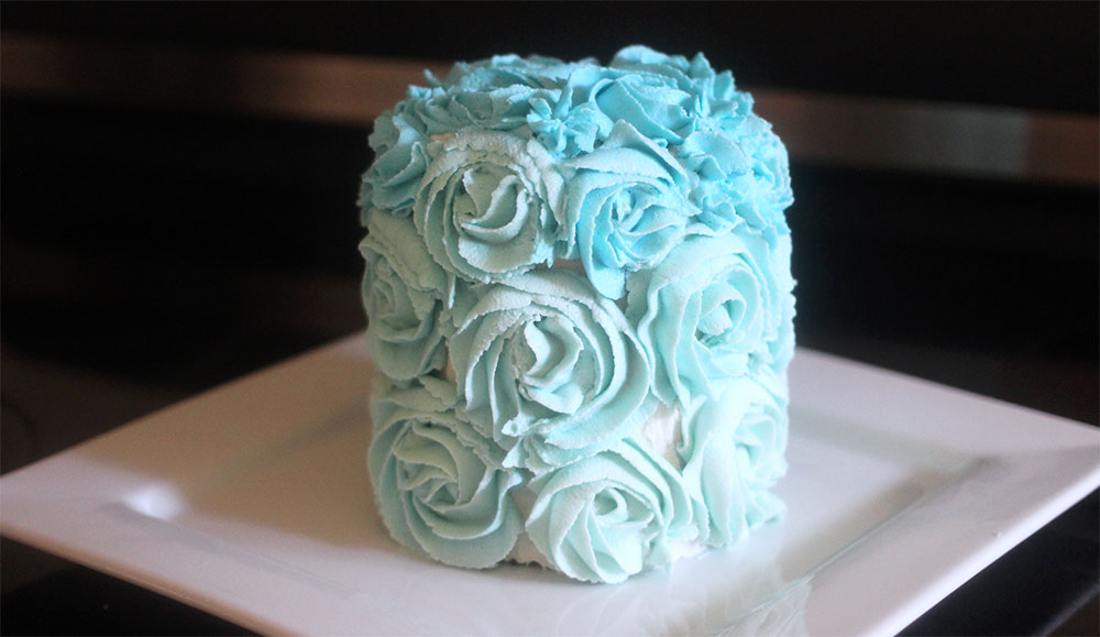 Vegan ombre cake