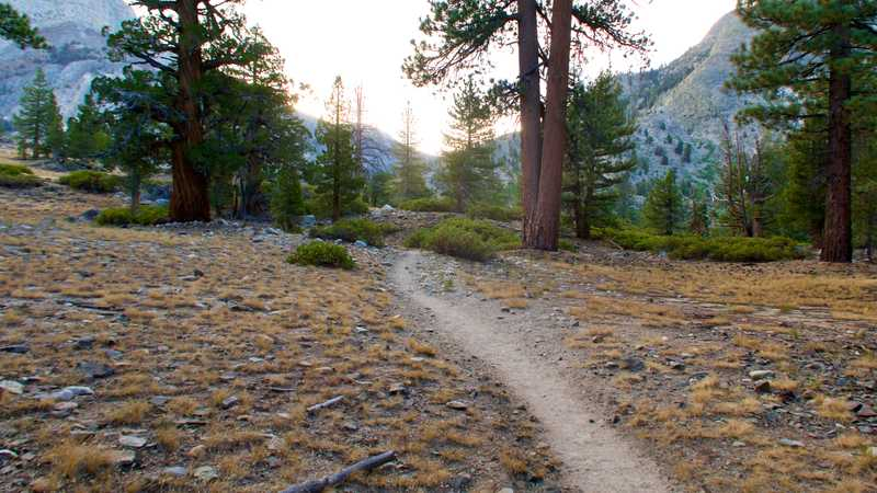 Returning to the PCT after leaving Muir Trail Ranch