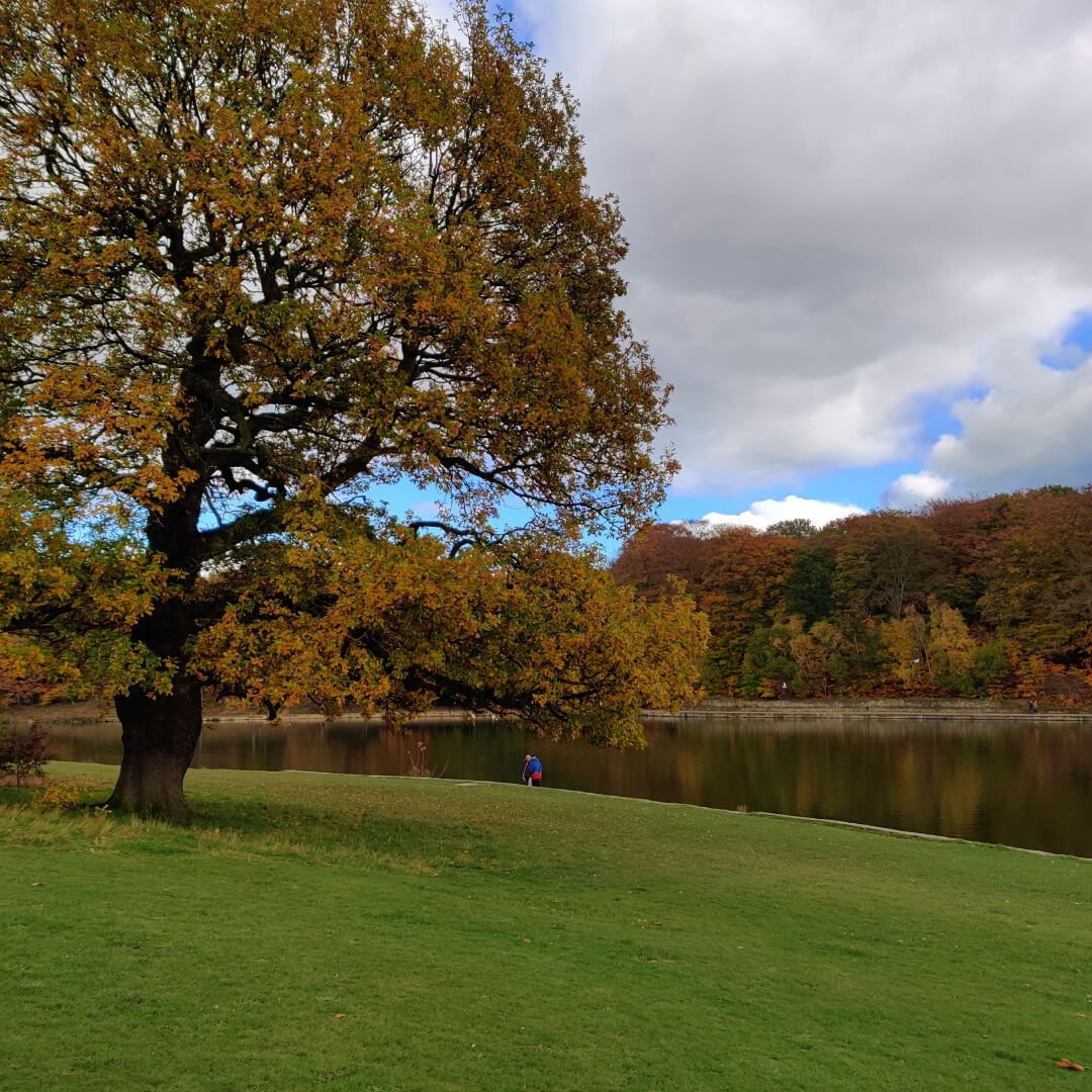 Roundhay Park Autumn day, with a slight view of the lake.