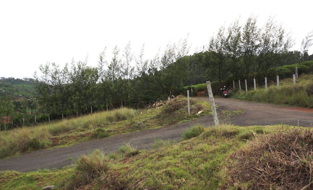 Top side plot at Creekside