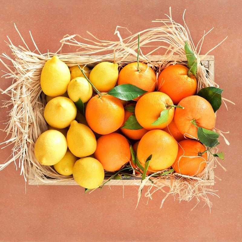 Obstkiste mit frischen Orangen und Zitronen: 6 kg Argolida & Aigio
