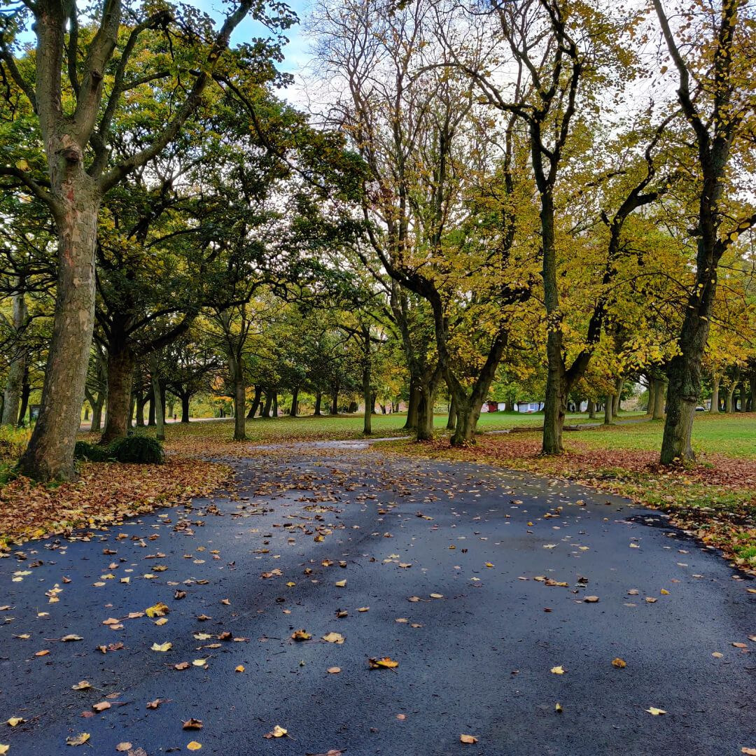 Woodhouse Moor/Hype main path through park