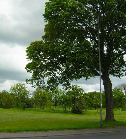 Nunroyd Park Leeds